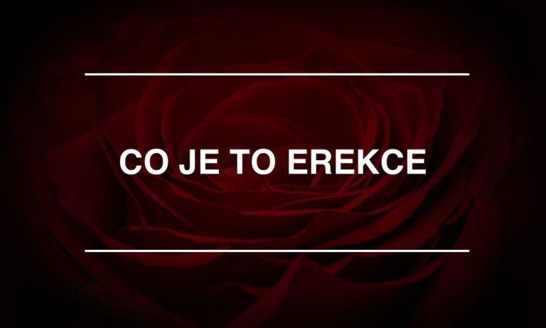 co je to erekce
